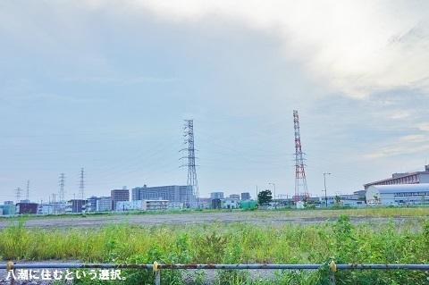 liveyashio203.JPG